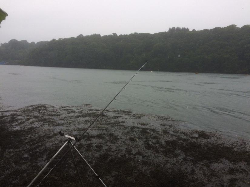 11/30 Fishing