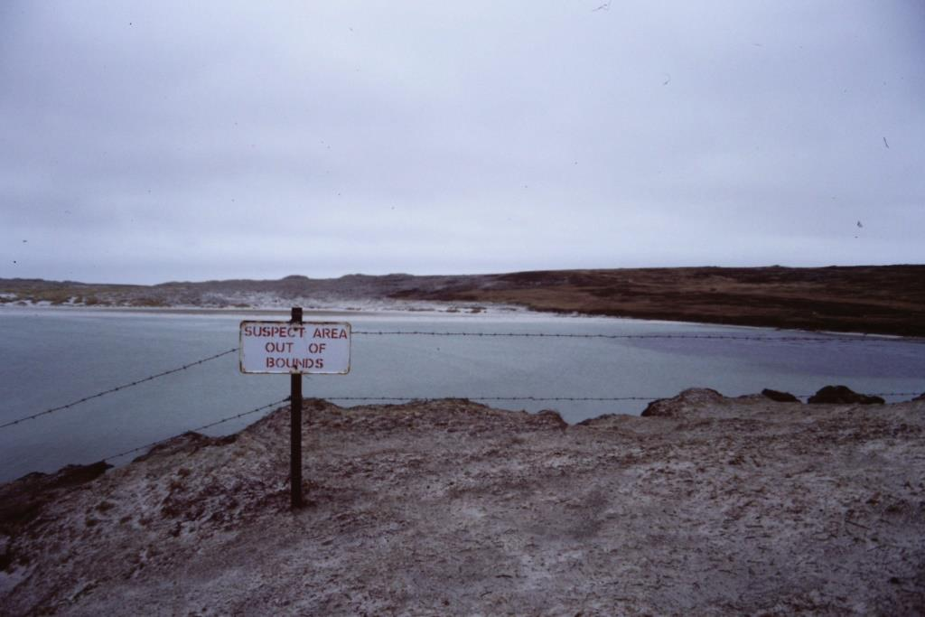 Penguin Walk, Falkland Islands, May 1988