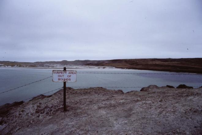 Penguin Walk, Falkland Islands, May 1988