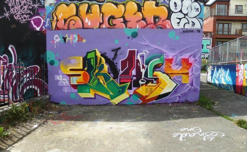 438. Dean Lane skate park(18)