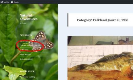 Falkland Islands diary homepage