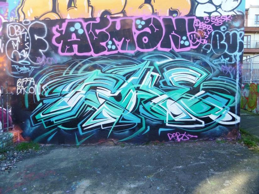 755. Dean Lane skate park(45)