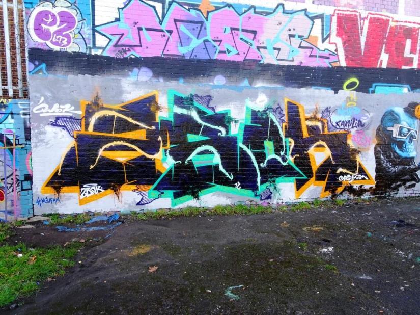 1383. Dean Lane skate park(114)