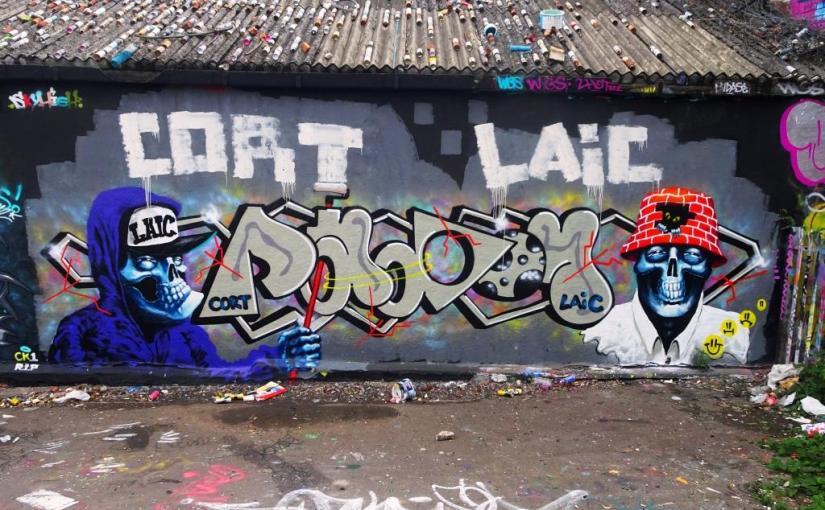 1756. Dean Lane skate park(172)