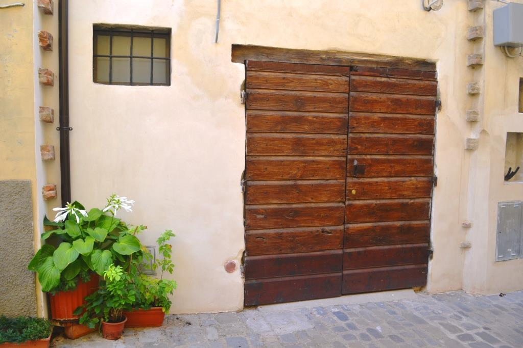 Hosta in a pot and Double door, Citta di Castello, Umbria, Italy