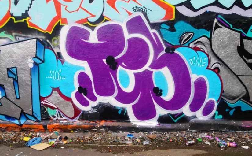 1719. Dean Lane skate park(163)