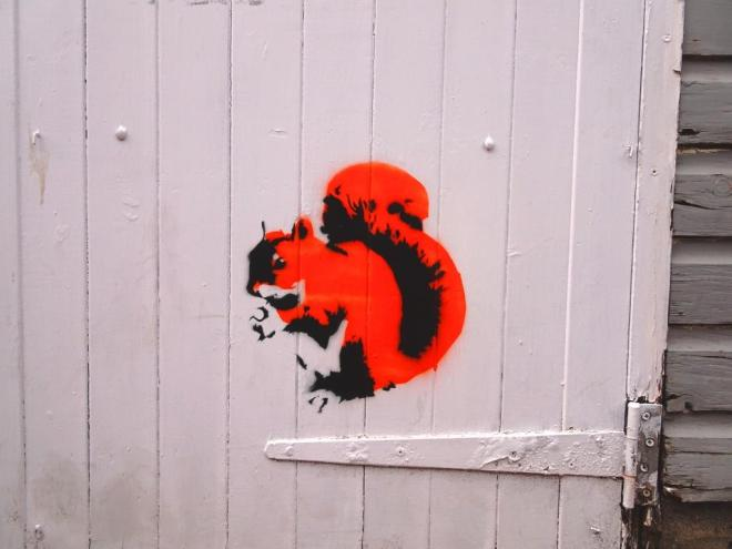 Squirrel by Stewy on a door in the back yard of The Steam Crane