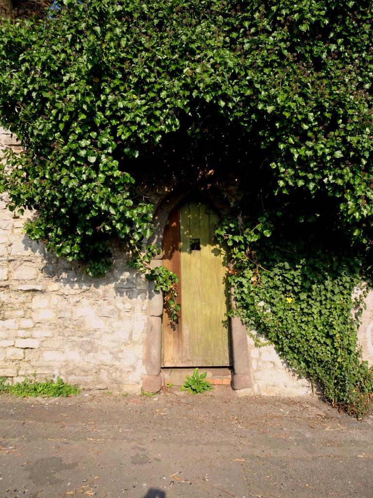 A secret garden door. We like those. Kingsdown, Bristol, April 2019