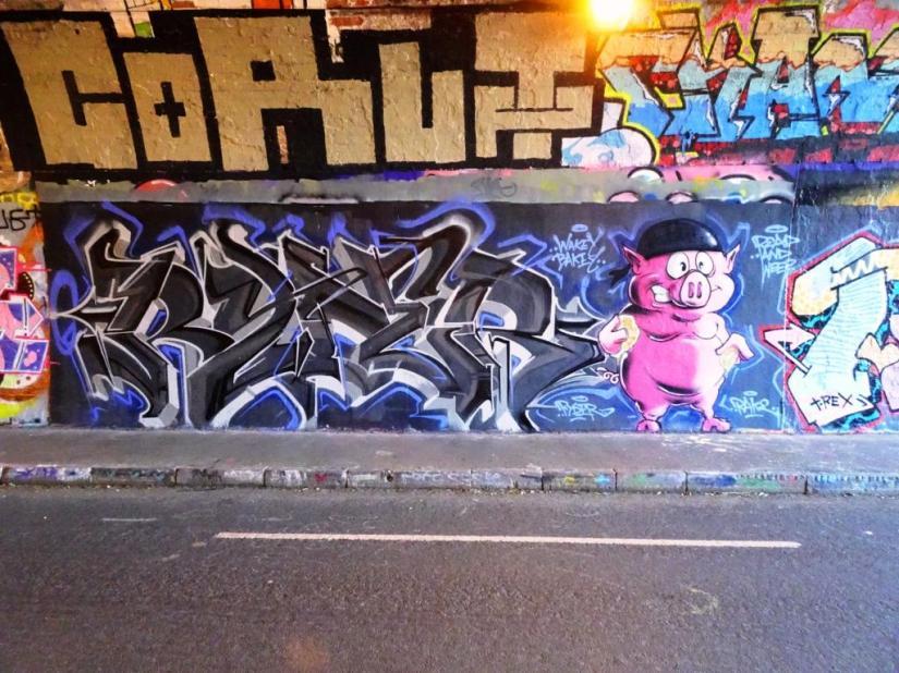 2202. St Werburghs tunnel(79)