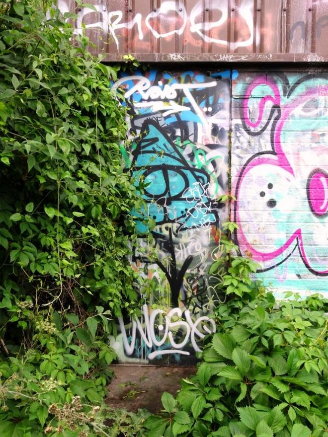 Overgrown fire exit door, River Avon cycle path, Bristol, June 2019