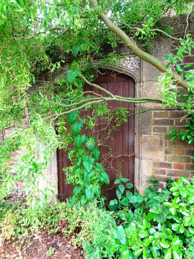 Door, Dorchester, June 2019