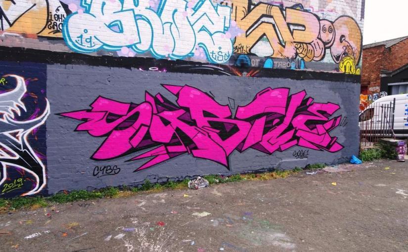 2316. Dean Lane skate park(230)