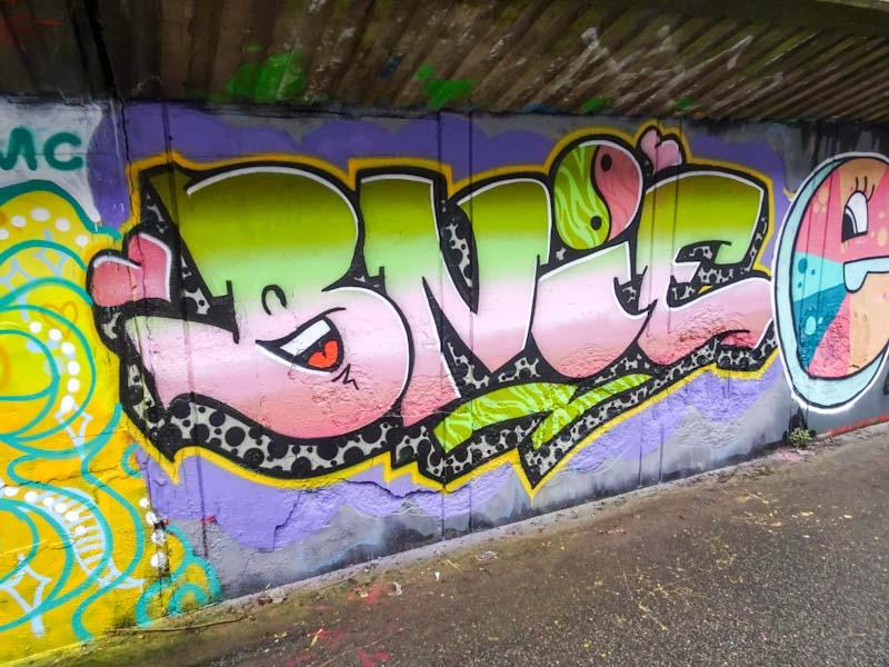 Bnie, M32 cycle path, Bristol, January 2020