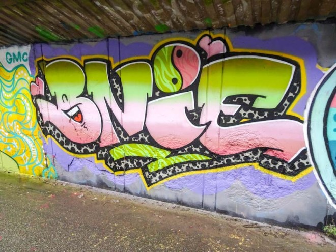 Bnie, M32 cycle path, Bristol, January 2020