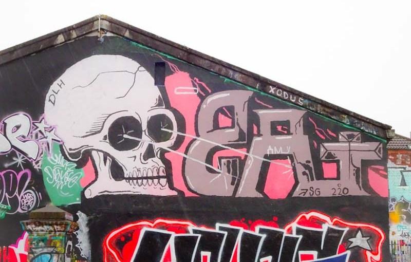2690. Dean Lane skate park(272)