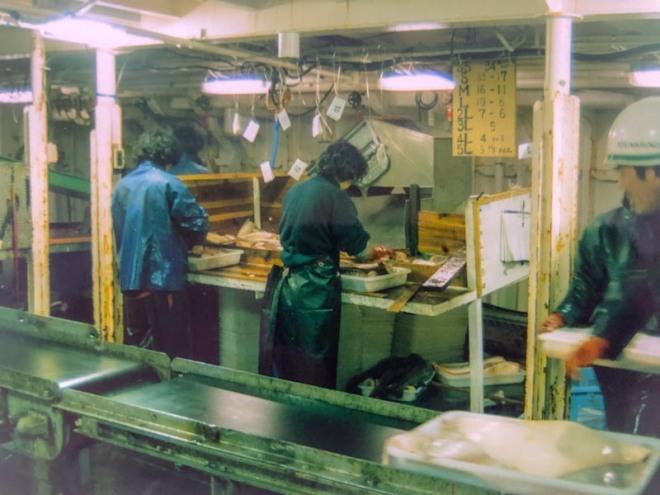 Processsing deck, Koei Maru 30, Falkland Islands 1988