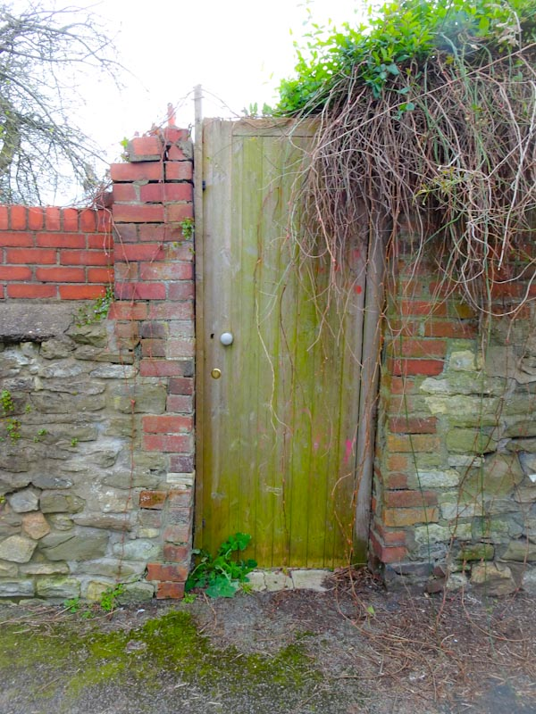 Garden gate, Montpelier, Bristol, March 2020