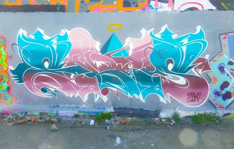 2951. Dean Lane skate park(312)
