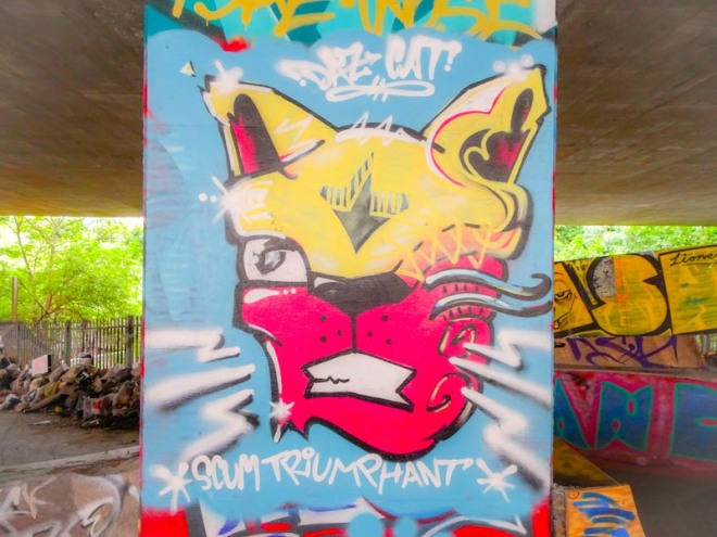 Daz Cat, M32 Spot, Bristol, July 2018