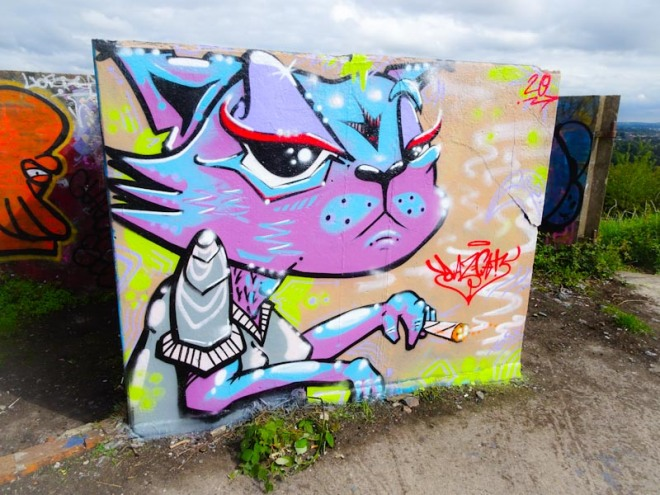 Daz Cat, Purdown Battery, Bristol, July 2020