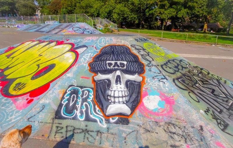 3253. Dean Lane skate park(356)