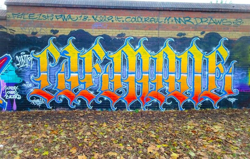 3317. Sparke Evans Park(3)