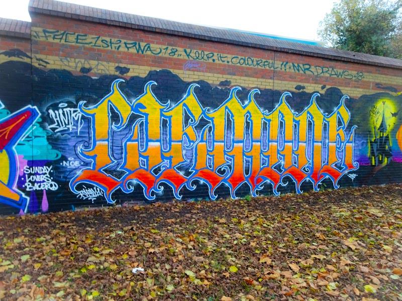 Todoaciem, Sparke Evans Park, Bristol, November 2020