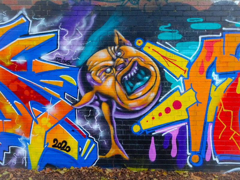 Zake, Sparke Evans Park, Bristol, November 2020