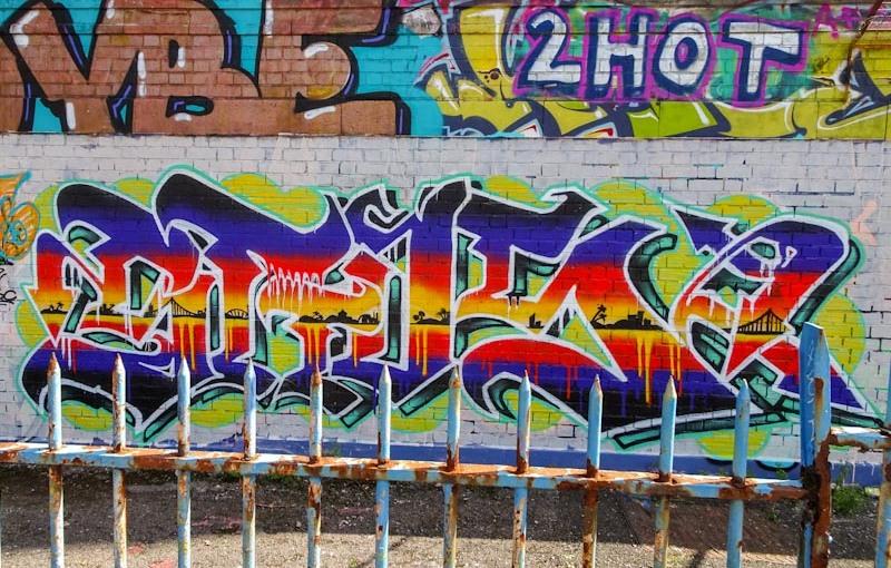 3307. Dean Lane skate park(365)