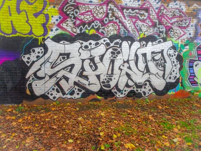 Dott Rotten, Sparke Evans Park, Bristol, November 2020