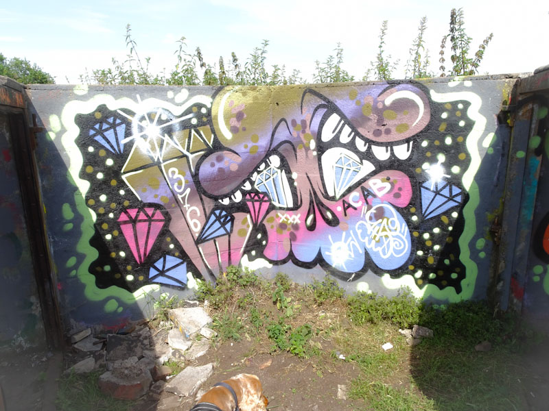Soap, Purdown Battery, Bristol, July 2021
