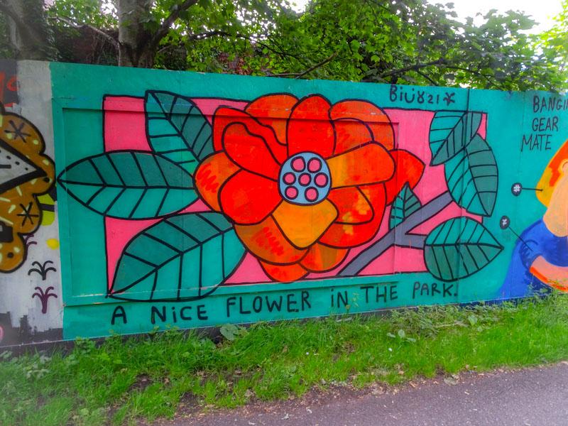 Billy, Greenbank, Bristol, July 2021