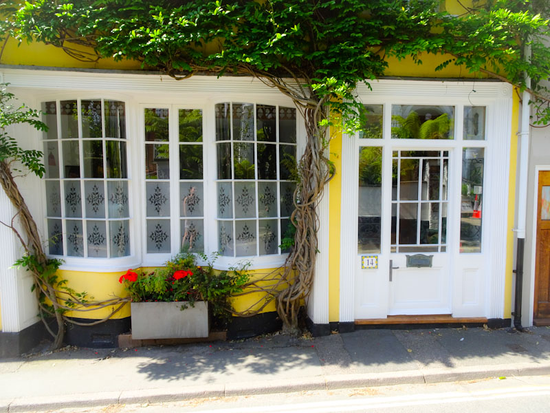 Beautiful shopfront with unusual bay windows, Wisteria and of course door, Lyme Regis, Dorset, August 2021