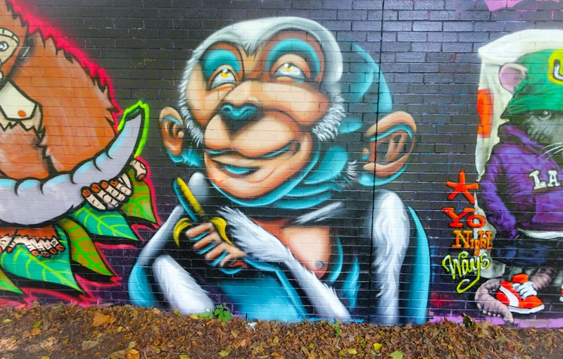 Zake, Sparke Evans Park, Bristol, September 2021